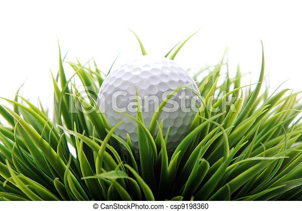 Golf ball in grass - csp9198360