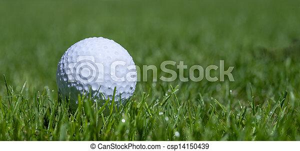 golf ball in grass - csp14150439