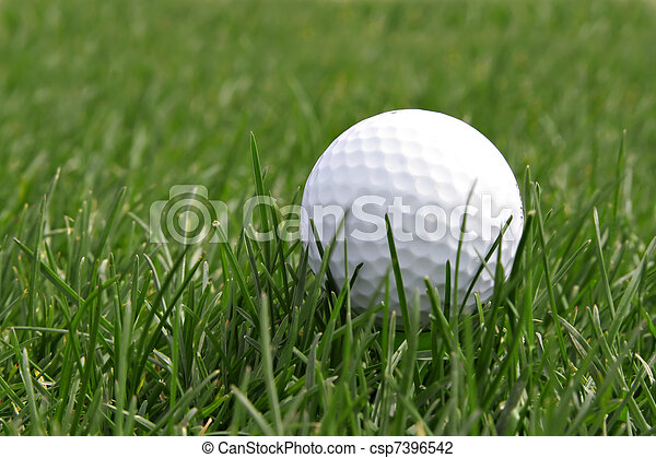 Golf ball in the field - csp7396542