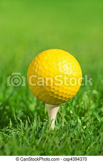 golf ball on a green grass - csp4394370
