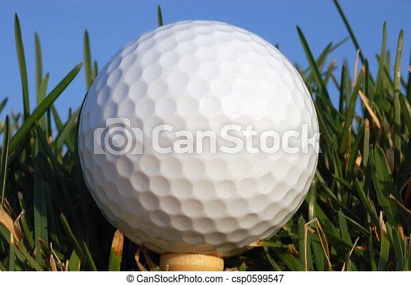 Golf ball on a tee - csp0599547