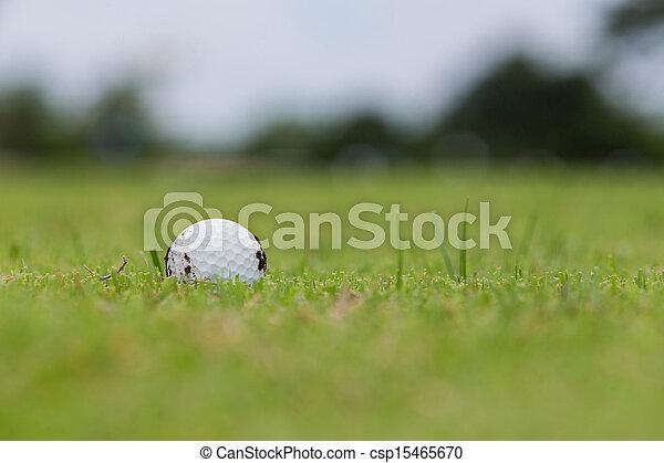 Golf ball on fairway - csp15465670
