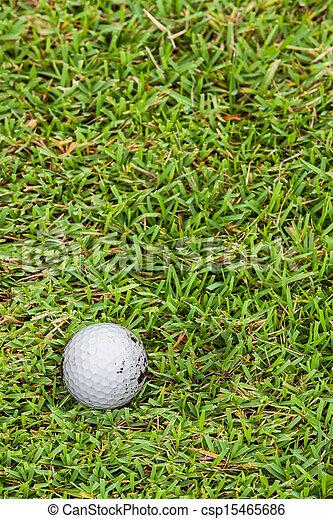 Golf ball on fairway - csp15465686