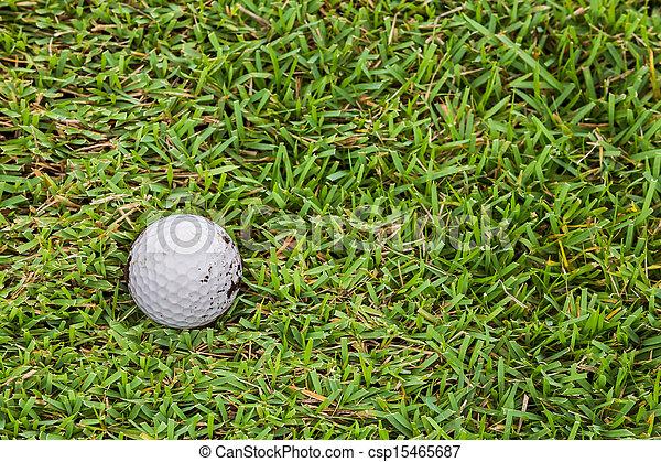 Golf ball on fairway - csp15465687