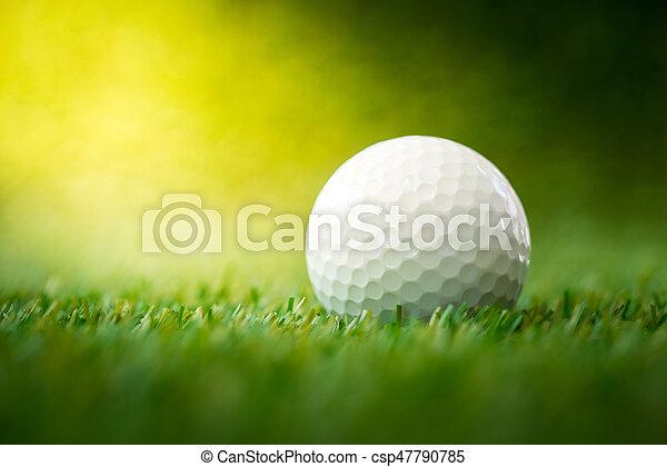 golf ball on fairway - csp47790785