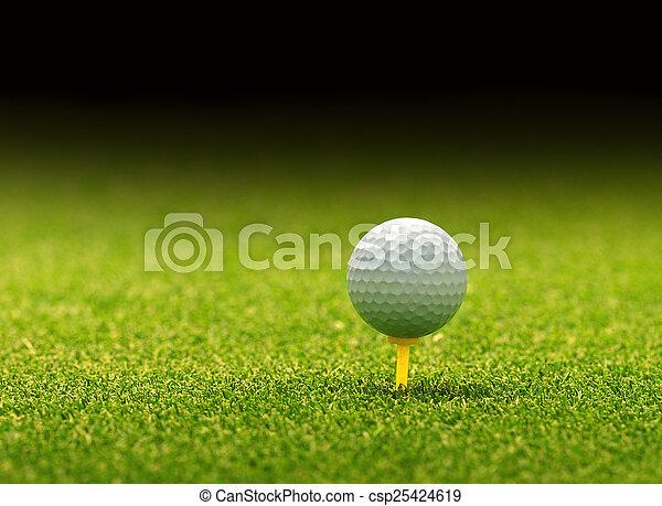 Golf ball on tee - csp25424619