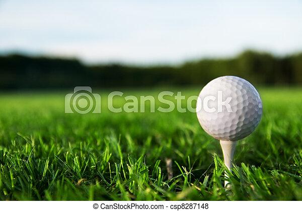 Golf ball on tee - csp8287148