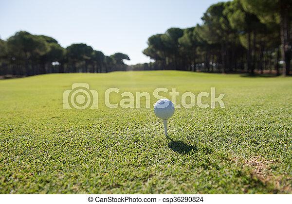 golf ball on tee - csp36290824