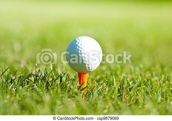 golf ball on tee - csp9879069