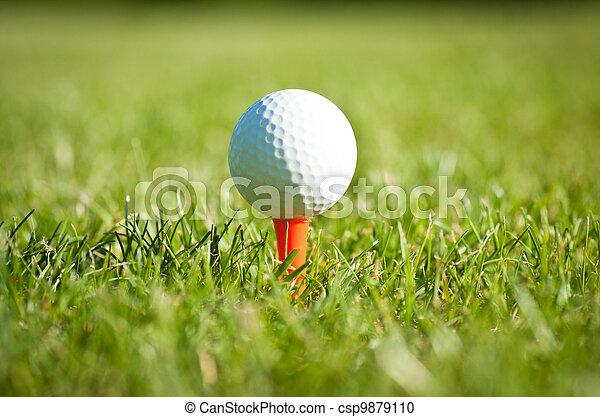 golf ball on tee - csp9879110