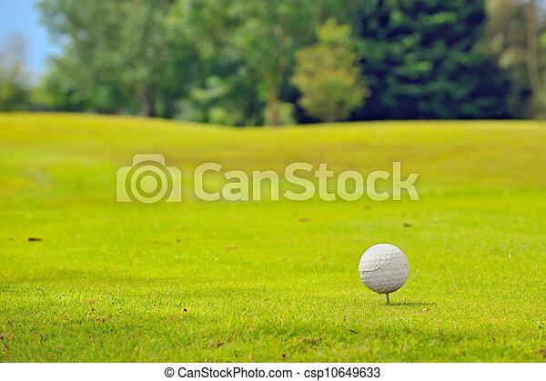 Golf ball on tee - csp10649633