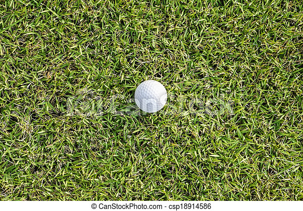 golf ball on the green - csp18914586