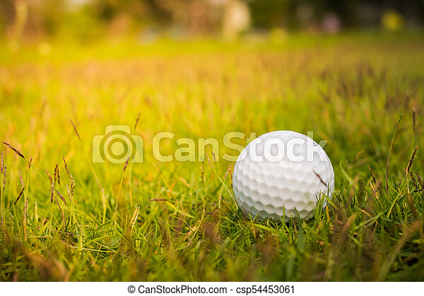 Golf ball on the green - csp54453061