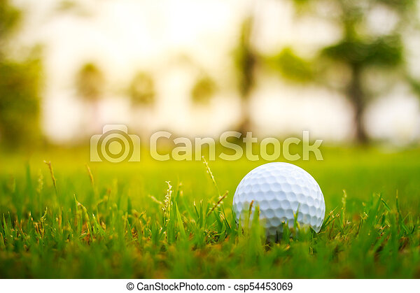 Golf ball on the green - csp54453069