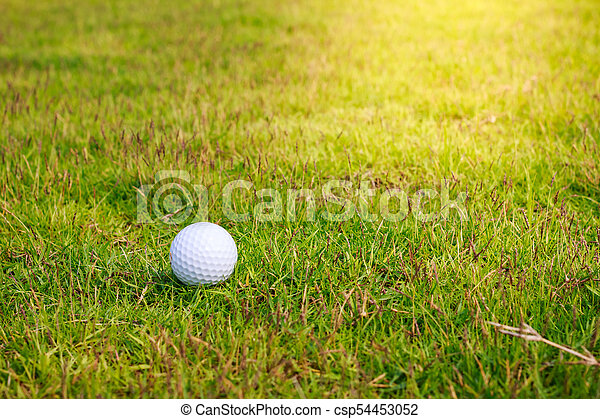 Golf ball on the green - csp54453052