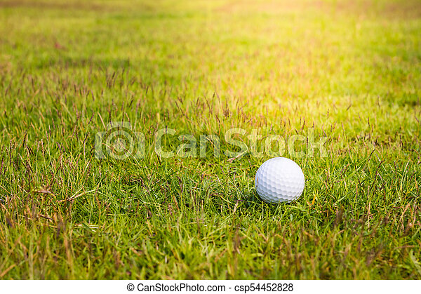 Golf ball on the green - csp54452828