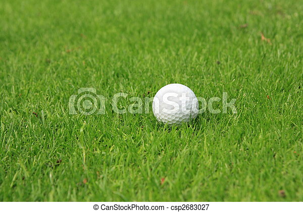 Golf ball - csp2683027