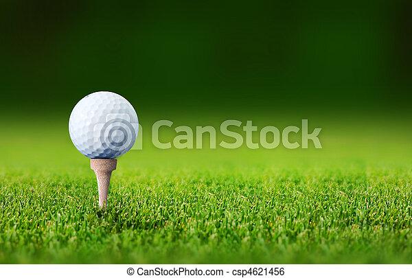 golf ball - csp4621456