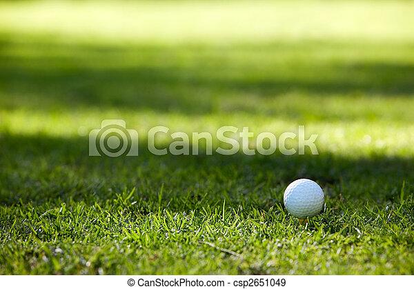 Golf ball - csp2651049
