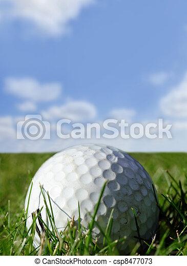 Golf ball - csp8477073