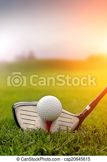 Golf club and ball in grass - csp20645615