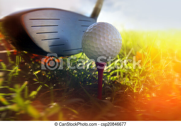 Golf club and ball in grass - csp20846677