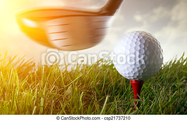 Golf club and ball in grass - csp21737210