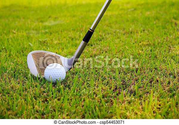 Golf club and ball in grass - csp54453071