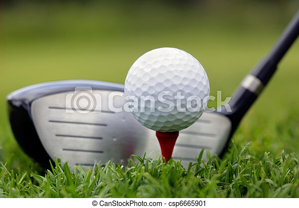 Golf club and ball in grass - csp6665901