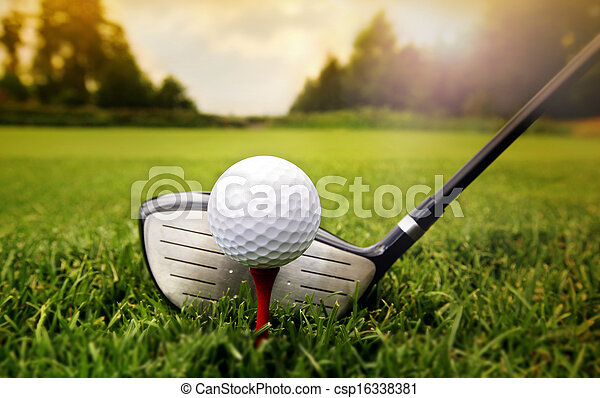 Golf club and ball in grass - csp16338381