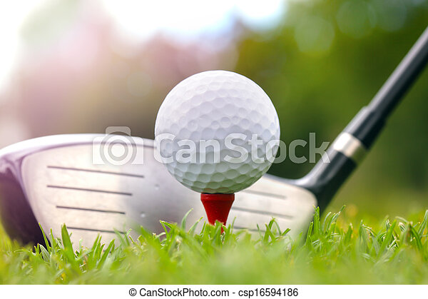 Golf club and ball in grass - csp16594186