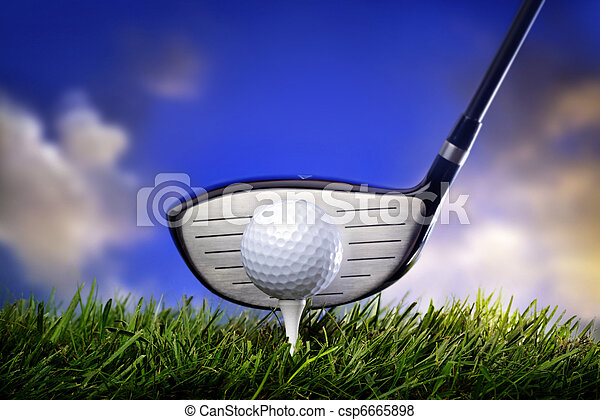 Golf club and ball in grass - csp6665898