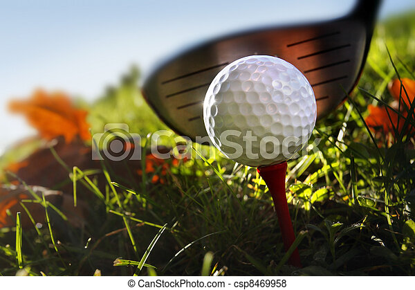 Golf club and ball in grass - csp8469958