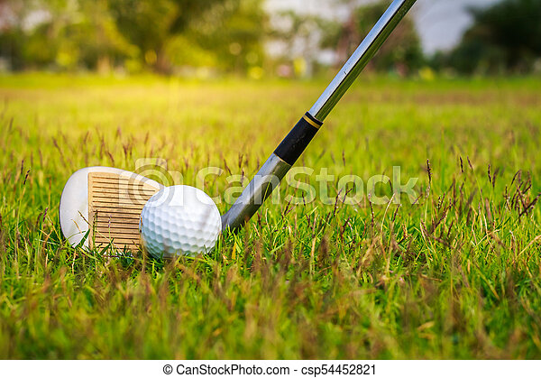 Golf club and ball in grass - csp54452821
