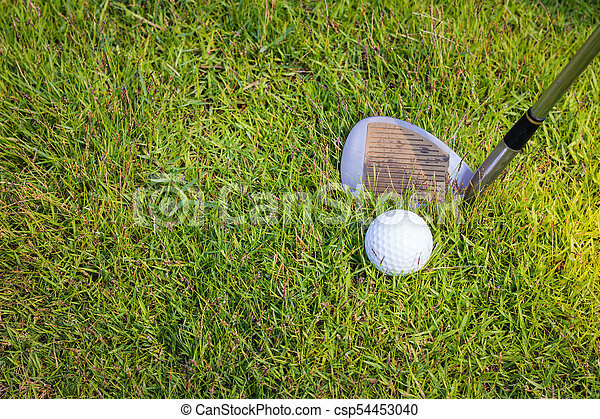 Golf club and ball in grass - csp54453040