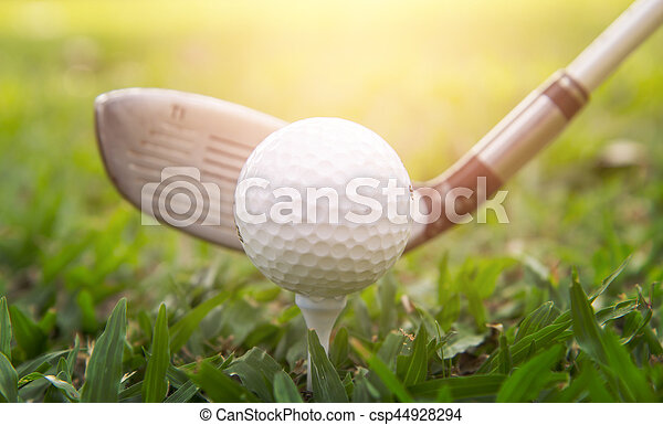 Golf club and ball in grass - csp44928294