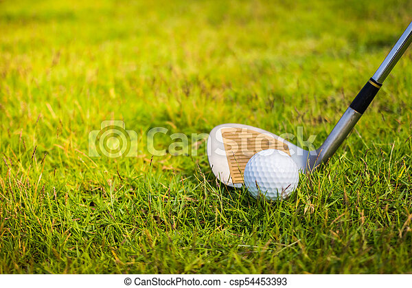 Golf club and ball in grass - csp54453393