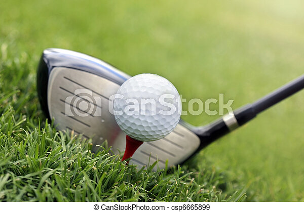 Golf club and ball in grass - csp6665899