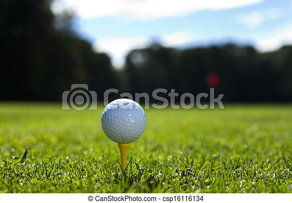 Golf club and ball in grass - csp16116134