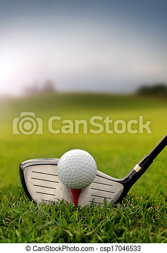 Golf club and ball in grass - csp17046533