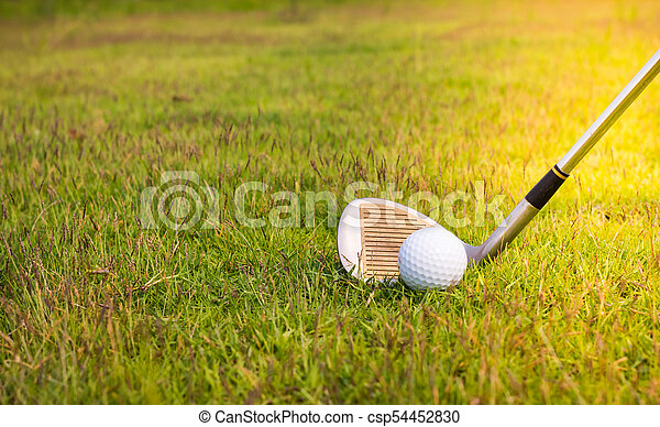 Golf club and ball in grass - csp54452830