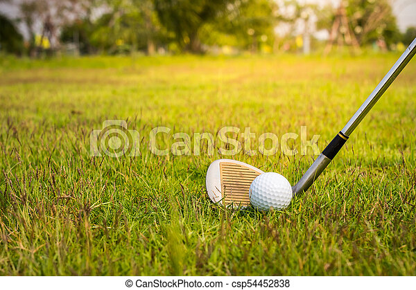 Golf club and ball in grass - csp54452838