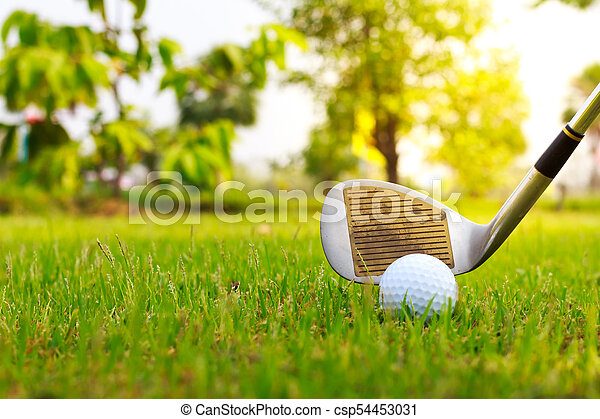 Golf club and ball in grass - csp54453031