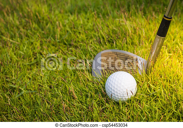 Golf club and ball in grass - csp54453034