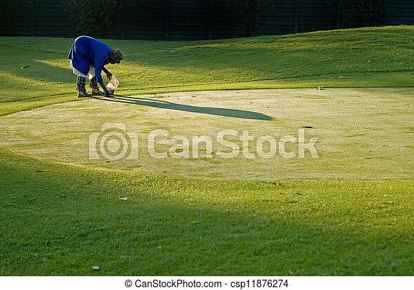 Golf green maintenance - csp11876274