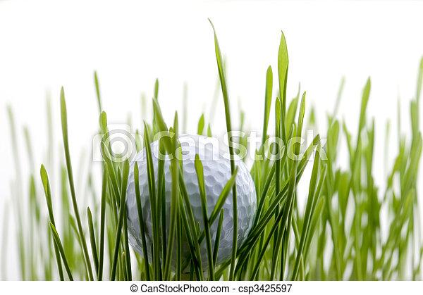 Golf - csp3425597