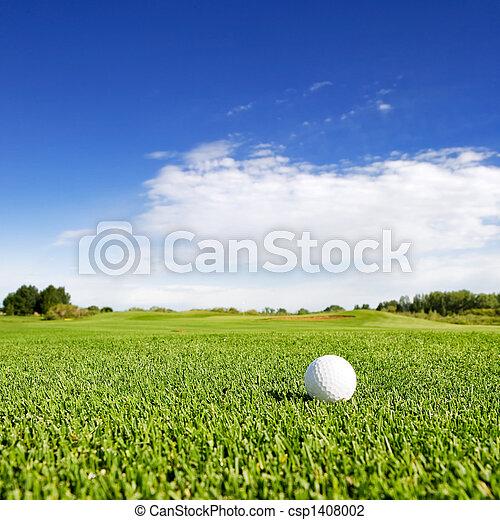 Golf - csp1408002