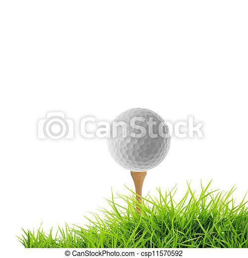 golf tee off - csp11570592