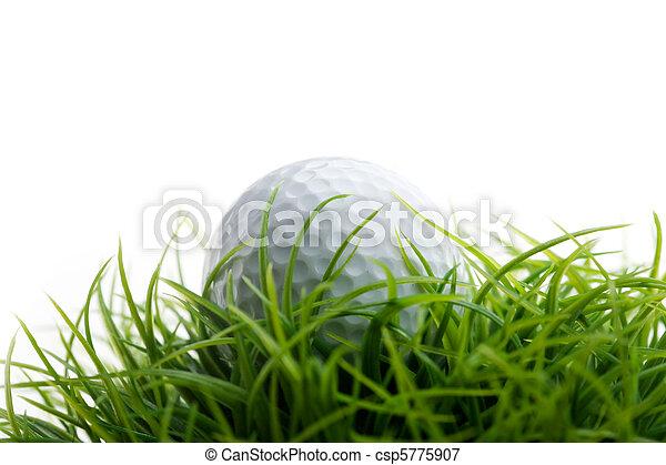 Golfball - csp5775907