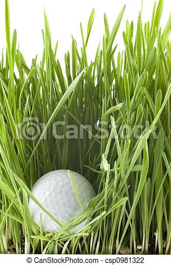 Golfball - csp0981322